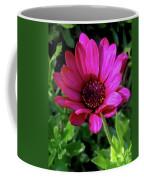 The Botanical Garden Zagreb Floral #9 Coffee Mug
