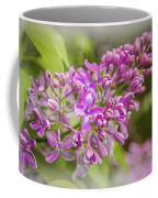 The Branch Of Lilac Coffee Mug
