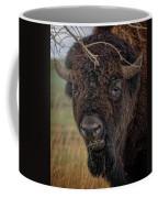 The Buffalo 2 Coffee Mug