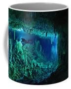 The Cascade Room Leads Divers Deeper Coffee Mug by Wes C. Skiles
