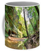 The Caves And Trail At Old Man's Cave Hocking Hills Ohio Coffee Mug