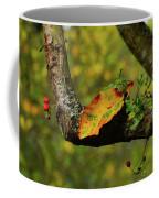 The Changing Season Coffee Mug