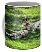 The Cheetahs Coffee Mug