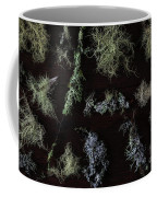 The Collection Of Lichens Coffee Mug