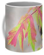 The Colors Of Shumac 2 Coffee Mug
