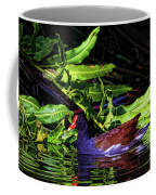 The Common Gallinule Coffee Mug