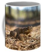 The Common Toad 4 Coffee Mug