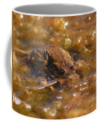 The Common Toads 2 Coffee Mug