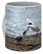 The Courtship Feeding - Series 2 Of 3 Coffee Mug