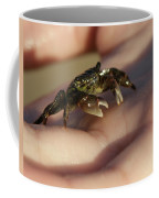 The Crab Coffee Mug