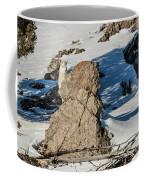 The Curious Kid Coffee Mug