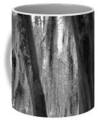 Cypress In The Bayou Coffee Mug