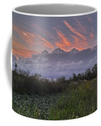 The Daily Disappearing Act Coffee Mug
