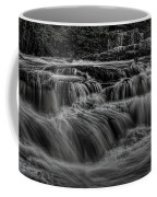 The Dells Of The Eau Claire Panoramic Coffee Mug