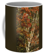 The Dying Leaves' Final Passion Coffee Mug
