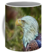 The Eagle Look Coffee Mug