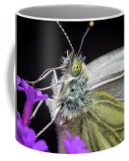 The Eye Of The Green-veined Butterfly. Coffee Mug