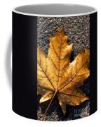 The Fall Of Autumn Coffee Mug