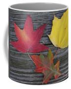 The Fallen Leaves Of Autumn Coffee Mug