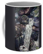 The Falls Coffee Mug