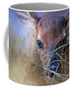 The First Fawn Coffee Mug