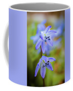 The First Spring Flowers Coffee Mug