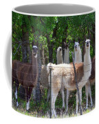 The Five Llamas Coffee Mug