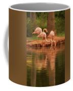 The Flock - The Serenity Of Flamingos At Water's Edge Coffee Mug