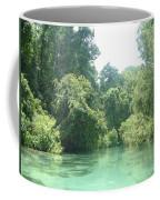 The Florida Calm Coffee Mug