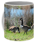 The Geese Are Back Coffee Mug