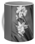 The Gentleness Of Spring Bw Coffee Mug