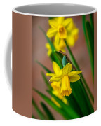 The Gentleness Of Spring Coffee Mug