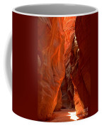 The Giant Room Coffee Mug