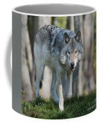 The Gray King... Coffee Mug