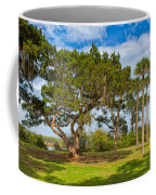 The Grounds Of The Kingsley Plantation Coffee Mug