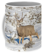 The Gtnp Mule Deer Buck Coffee Mug