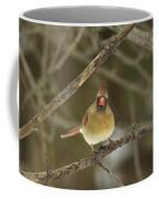 The Haridan - Northern Cardinal - Cardinalis Cardinalis  Coffee Mug