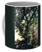 The Hidden Grave Coffee Mug