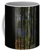 The Hidden Lake Coffee Mug