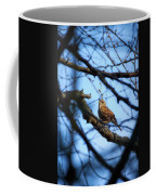 The Hiding Singer. Dunnock Coffee Mug