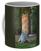 The Hobbit Home Coffee Mug