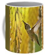 The Hummingbird And The Yellow Aloe  Coffee Mug