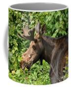 The Hungry Moose Coffee Mug