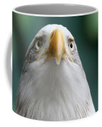 The Hunters Stare Coffee Mug
