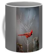 The Inquiring Cardinal Coffee Mug