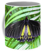 The Largest Butterfly In The World Coffee Mug