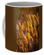 The Last Flowers Of Winter  Coffee Mug