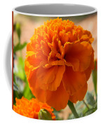 The Last Marigold Coffee Mug