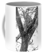 The Leopard's Stare Coffee Mug