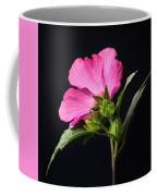 The Light Rose Of Sharon 2017 Square Coffee Mug